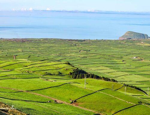 Terceira: Vulkane und Weinkeller