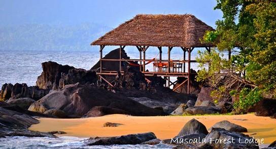 Masoala Forest Lodge – perfekt für naturnahe Ferien 5