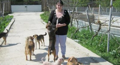Tirana: Schweizer Tierhilfe rund um die Uhr 5