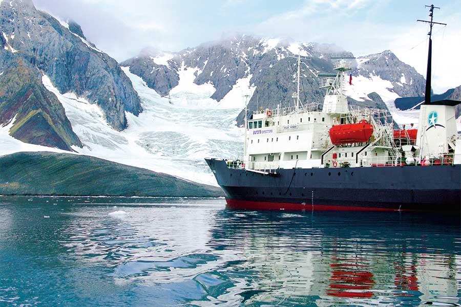 Arktis – einfach bärenstark! 4