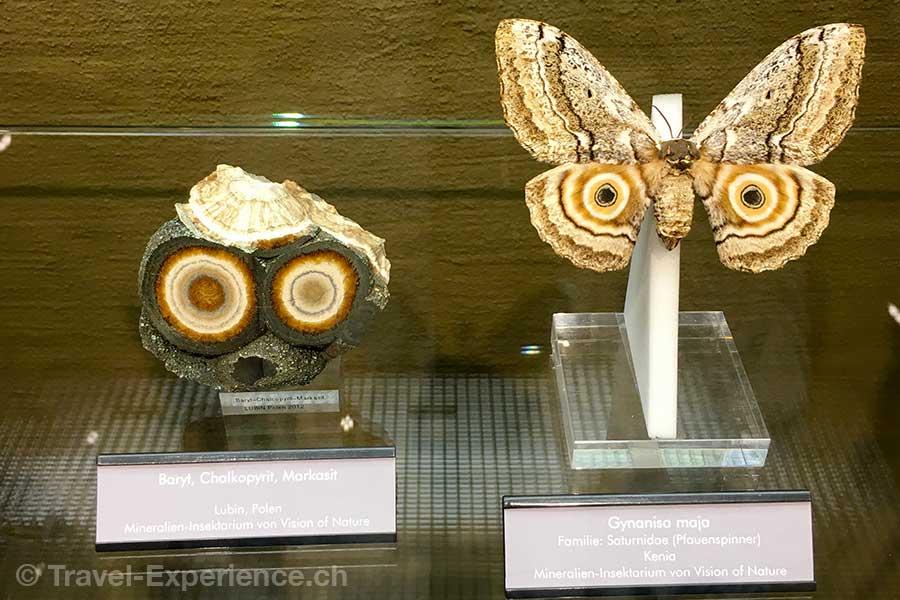 Deutschland, Rheinland-Pfalz, Idar-Oberstein, Deutsche Edelsteinstrasse, Deutsches Edelsteinmuseum, Sonderausstellung, Fliegende Juwelen