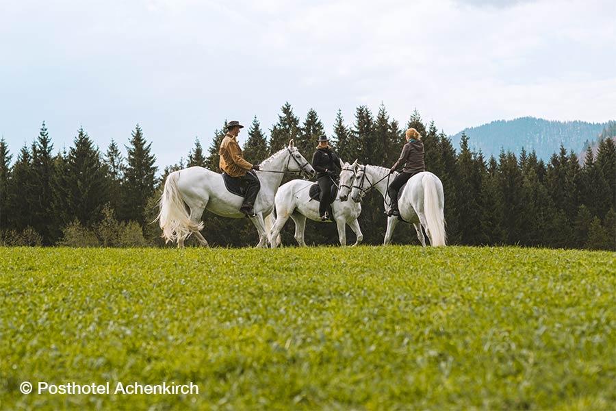 Österreich, Tirol, Achenkirch, Posthotel, Ausreiten, Pferde, Lipizzaner