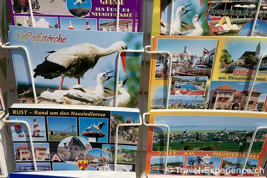 oesterreich, burgenland, neusiedler see, rust, stoerche, postkarten