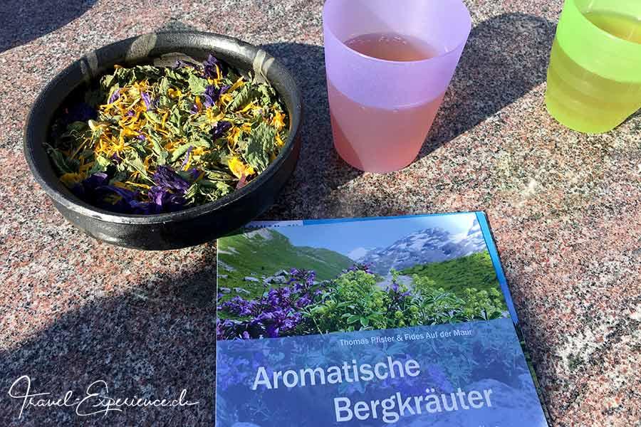 Schweiz, Wallis, Albinen, Heilkraeuterschule Albinen, Kraeuterbuch