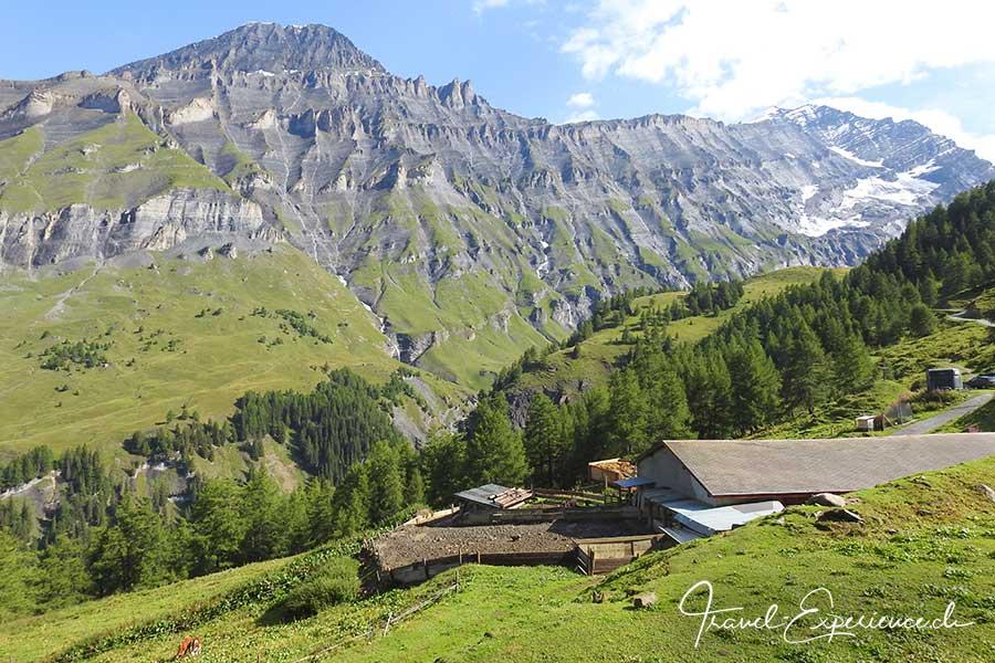 Schweiz, Wallis, Albinen, Majingalp,