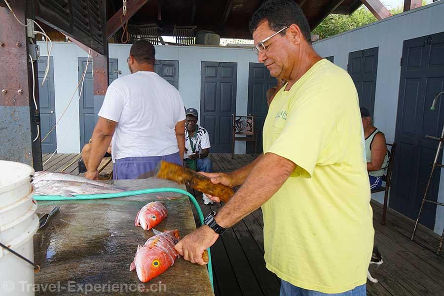 Karibik, Aruba, spanish lagoon, frischer fisch
