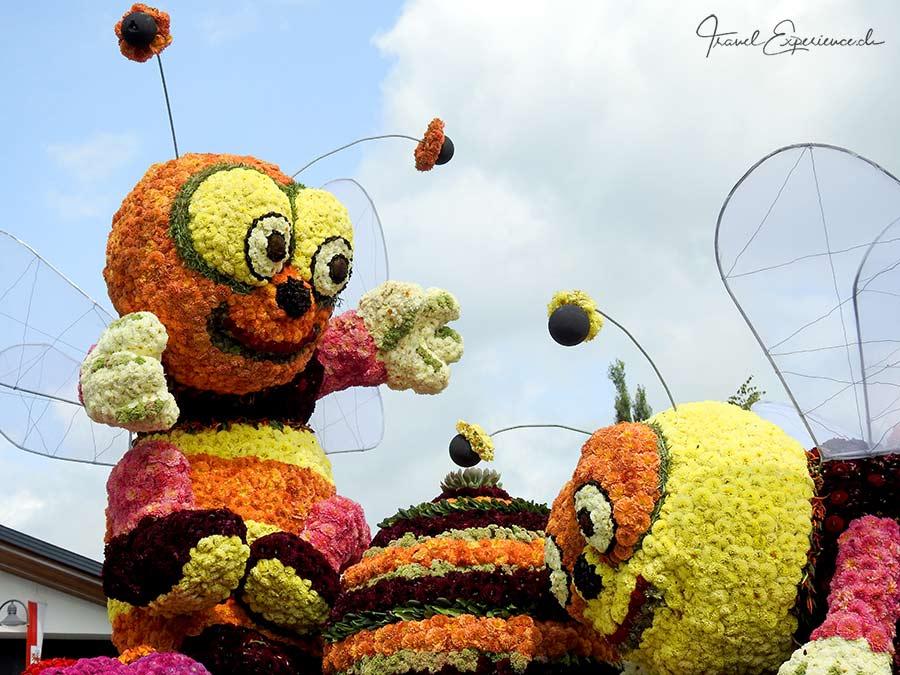 Blumenkorso Ebbs, Kufstein, Bienen,