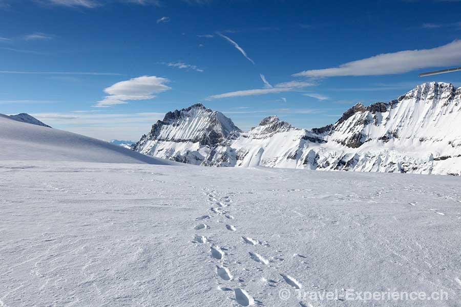 Berner Oberland, Helikopterflug, Petersgrat, Doldenhorn, Fruendenhorn, Blueemlisalp