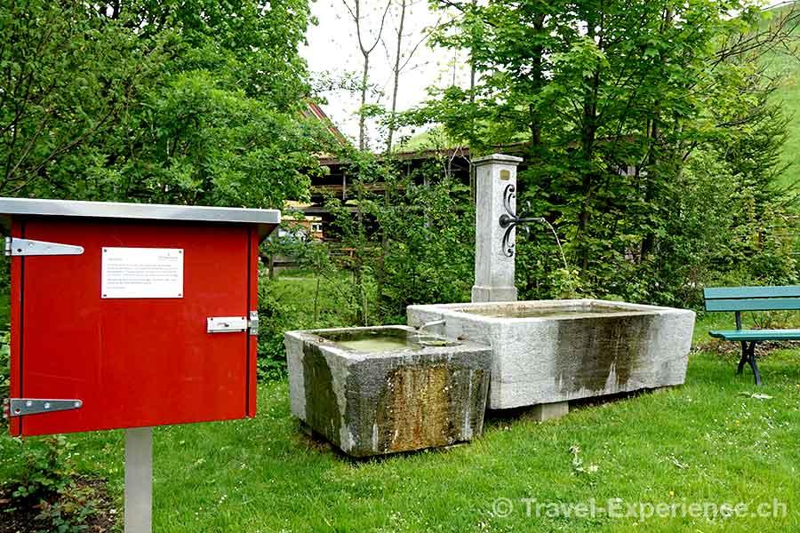 Appenzell, Hotel Hof Weissbad, Garten, Buecherbox