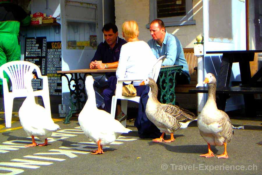 Jersey, Kanalinsel, Rozel Bay, Hungry Man