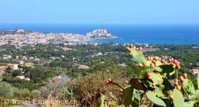 Korsika, Calvi Korsika, Anflug Calvi, Helvetic Airways Korsika, Flughafen Calvi, Helvetic Airways Korsika, Calvi, Piazzili, Ceccu, Schäferhaus Korsika, Calvi, Piazzili, Ceccu, Pool