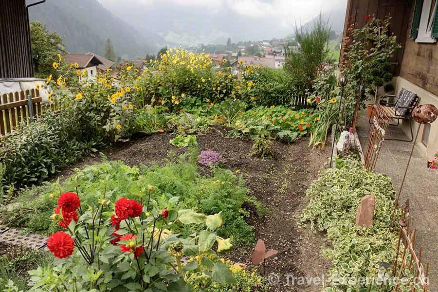 oesterreich, vorarlberg, montafon, Kräuter, Blumen, Wanderung, Bauerngarten