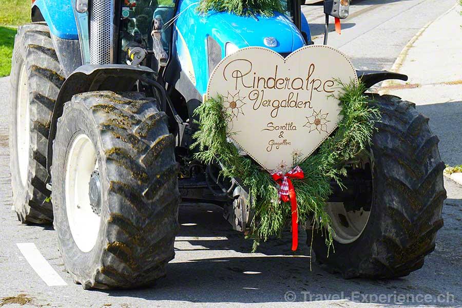 oesterreich, vorarlberg, montafon, st. gallenkirch, Almabtrieb, Traktor