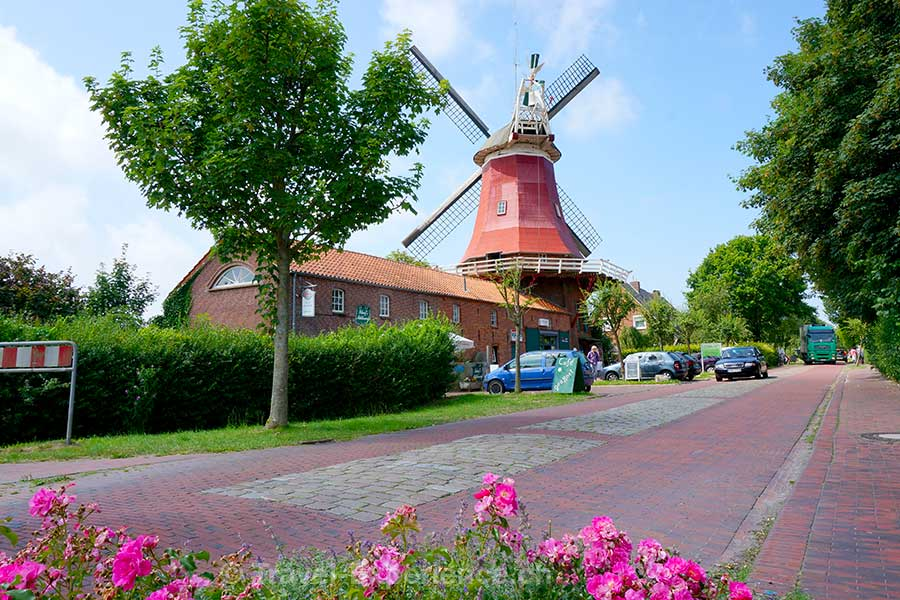 Ostfriesland, Greetsiel, Mühle