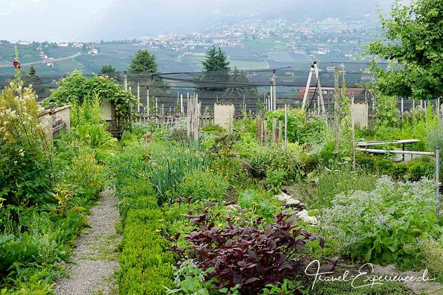 Italien, Schenna, Oberhaslerhof, Kraeutergarten