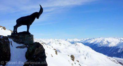 Schweiz, Graubünden, St. Moritz, Corviglia, Piz Nair Schweiz, Graubünden, St. Moritz, Bobbahn Schweiz, Graubünden, St. Moritz, Bobbahn Schweiz, Graubünden, St. Moritz, Cresta Run, Clubhaus