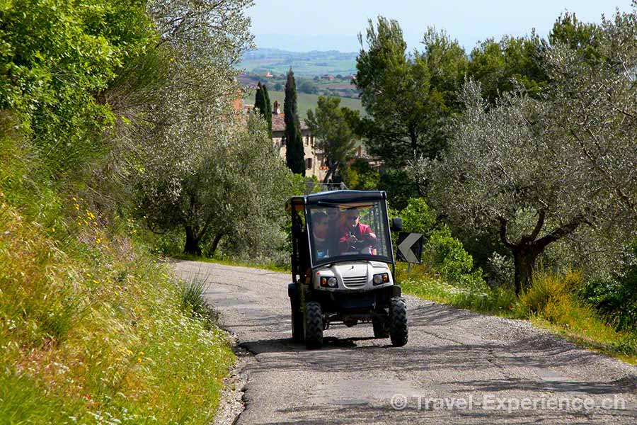 Italien, Toskana, Monte Vibiano Vecchio, Wein, Oliven, elektro Caddy