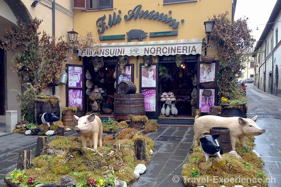 Italien, Noricia, Wildschweine, Trüffel