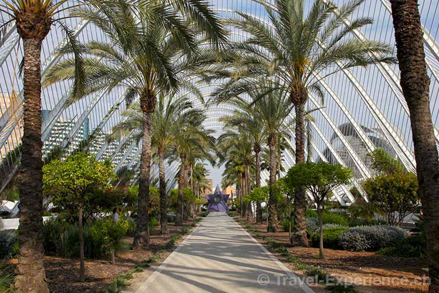 Valencia, Stadt der Künste und Wissenschaften, Umbracle