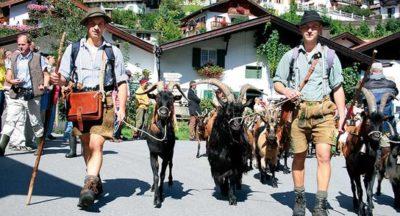 Mittenwald: Tierische Zugspitz-Region 18