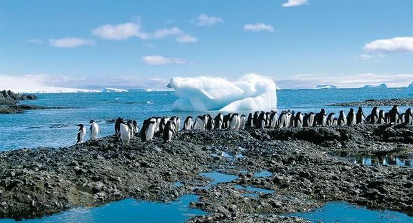 Antarktis – die andere Welt 19