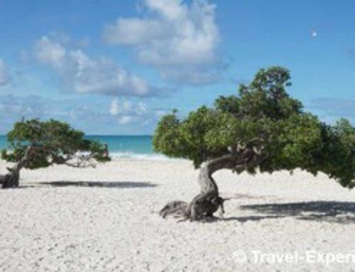 Aruba – Bonbini im Paradies!