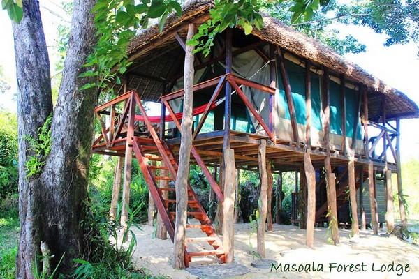 Masoala Forest Lodge – perfekt für naturnahe Ferien 3