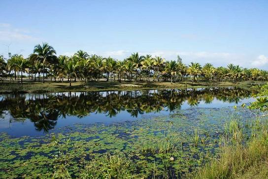 Maroantsetra: Masoala Resort – perfekt zum Entspannen 3