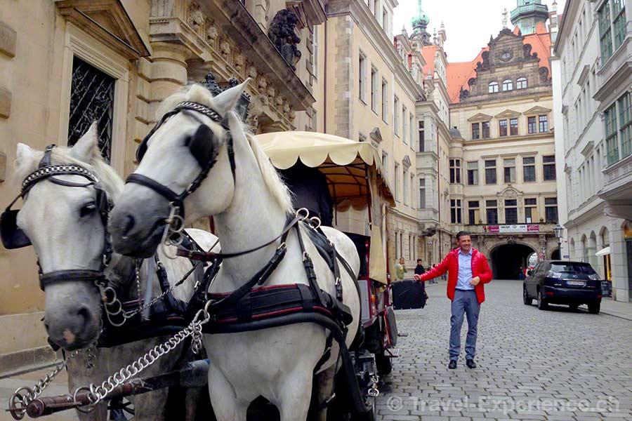Dresden, Pferdekutsche