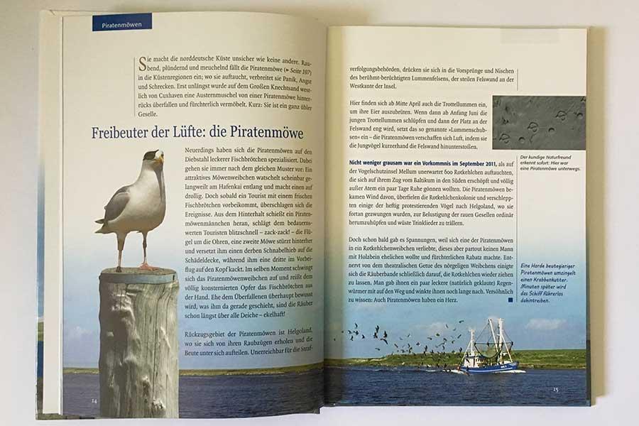 Nordsee – Zwei Möwen und ein halbes Hähnchen 2