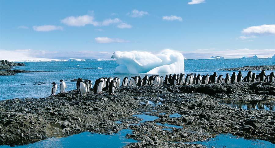 Antarktis – die andere Welt 2