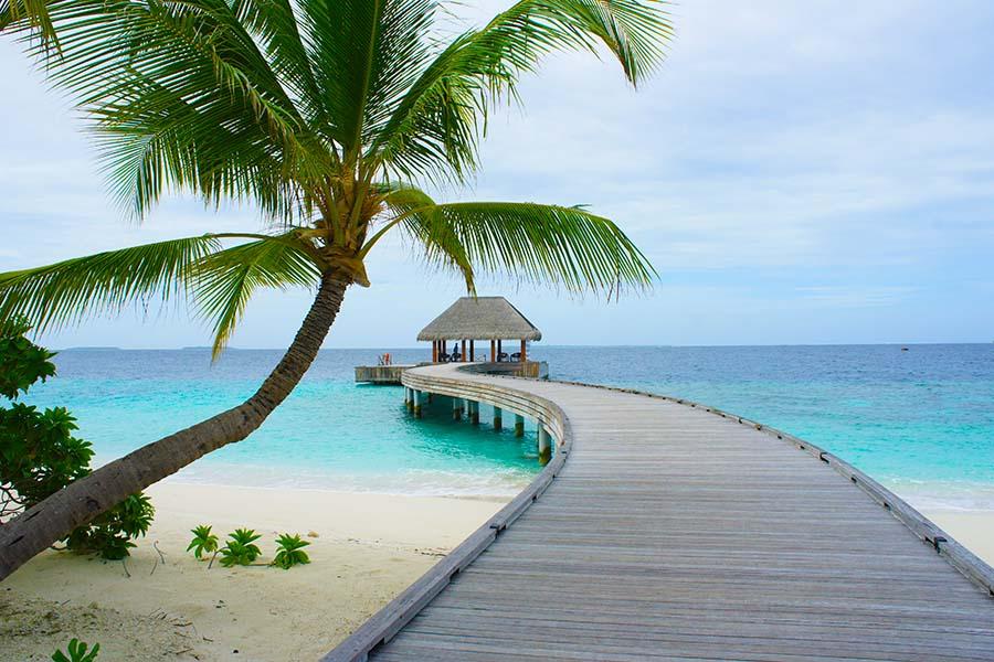 Dusit Thani Maldives - die Dichtbewachsene 6