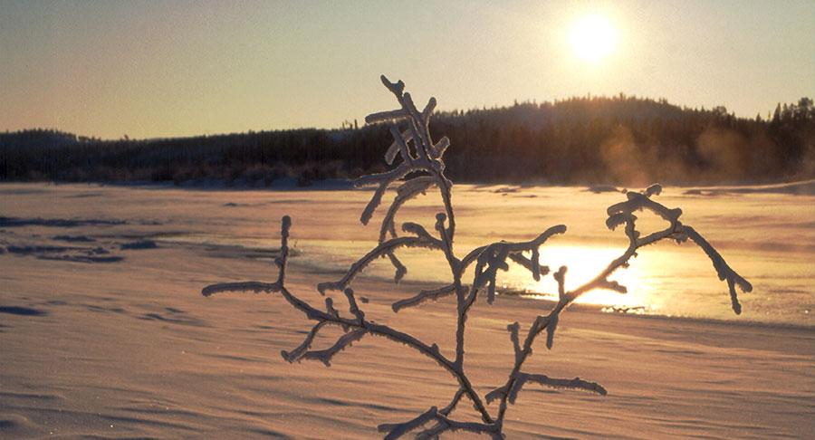 Lappland, DAS Winterwunderland 2