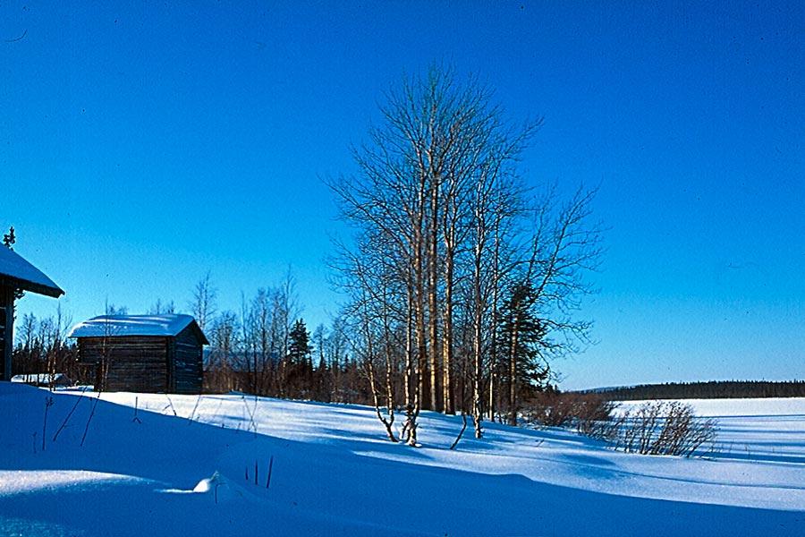 Lappland, DAS Winterwunderland 3