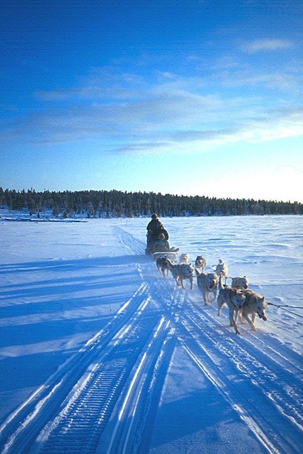 Lappland, DAS Winterwunderland 7