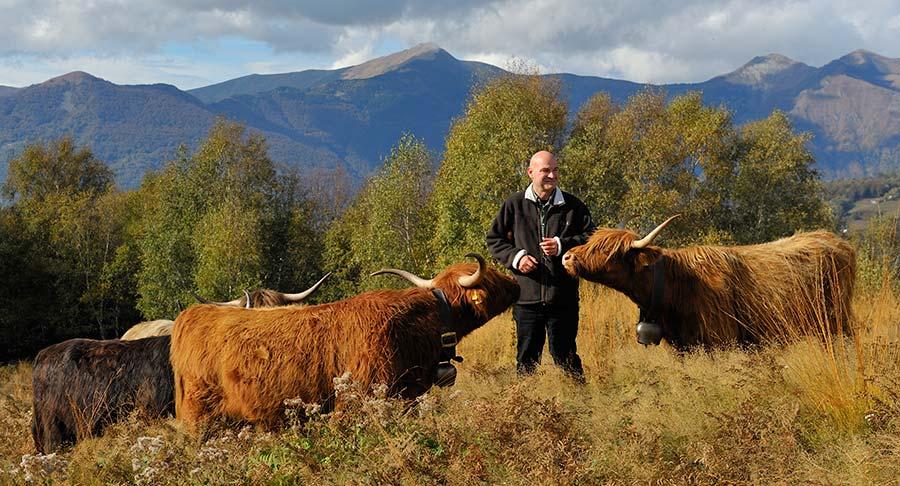 Tessin: Zu Besuch bei Betsy auf der Alp 2