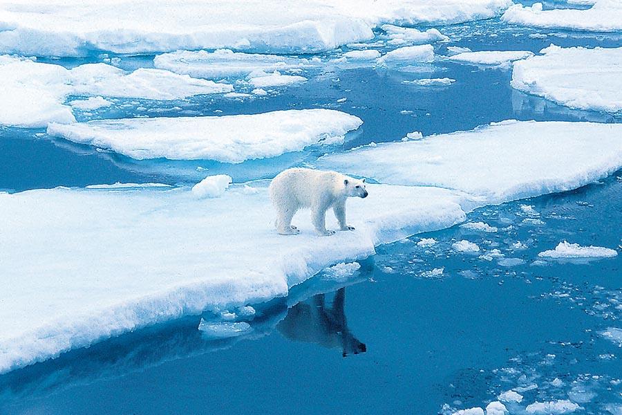 Spitzbergen: Faszination im Eis 7