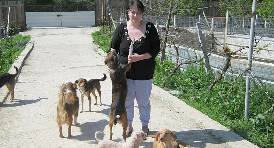 Maria Cristina Medina-Casanova, Tierhilfe Tirana