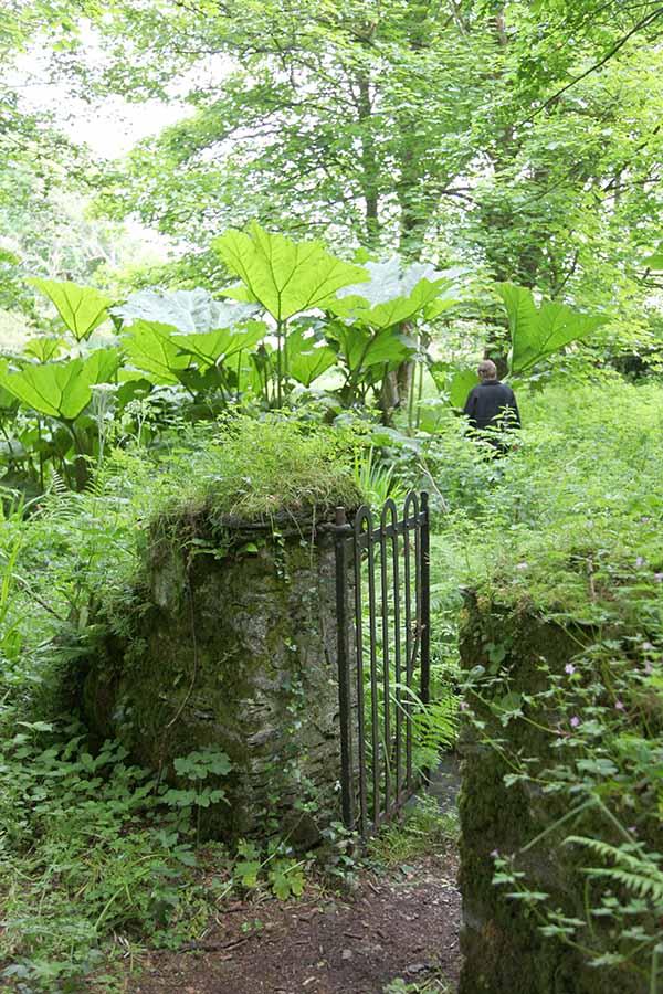 West Cork – sattes Grün, Mythen und Meer 7