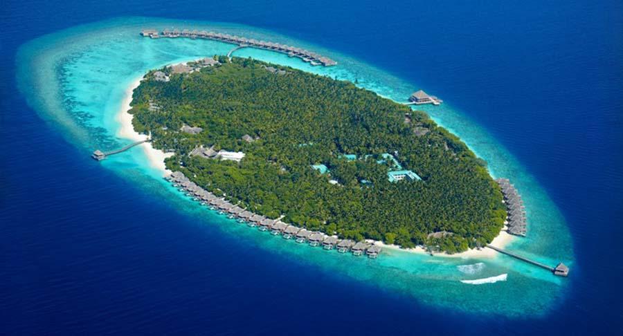 Dusit Thani Maldives - die Dichtbewachsene 2
