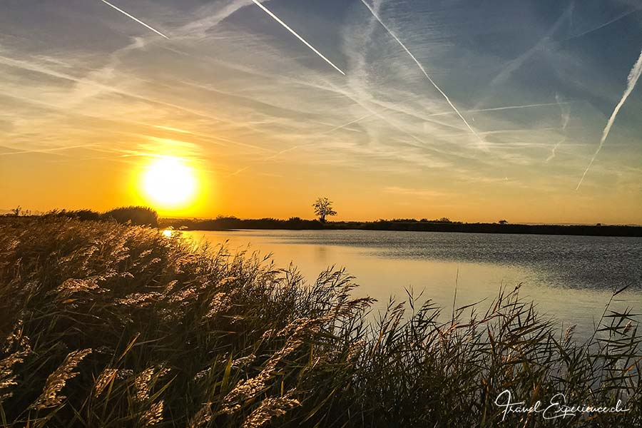 Burgenland, Seewinkel, Sonnenuntergang