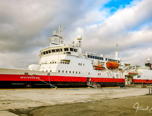 Postschiffreise mit MS Vesterålen – unsere Tipps und Infos