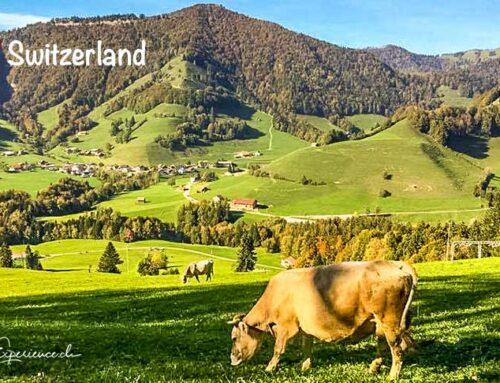 12 Schweizer Blogger verraten ihre beliebtesten Ausflugstipps