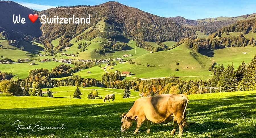 Schweizer Ausflugstipps, Roundup