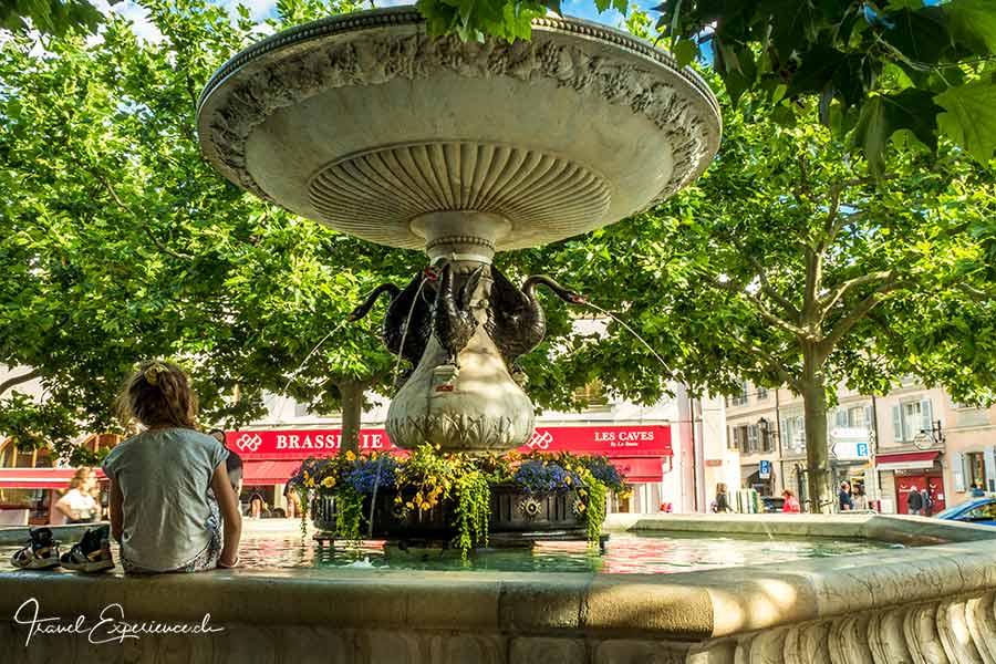 Carouge, Place du Marché