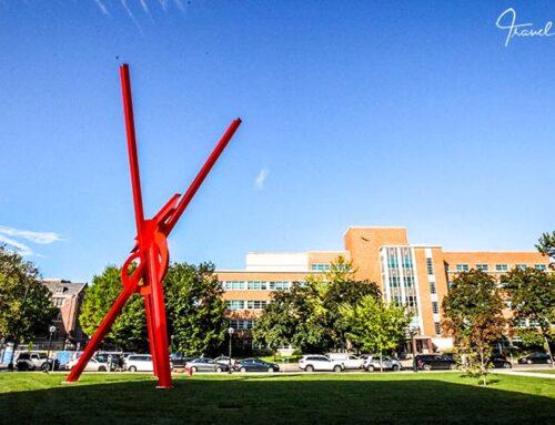 Ann Arbor, die Studentenstadt