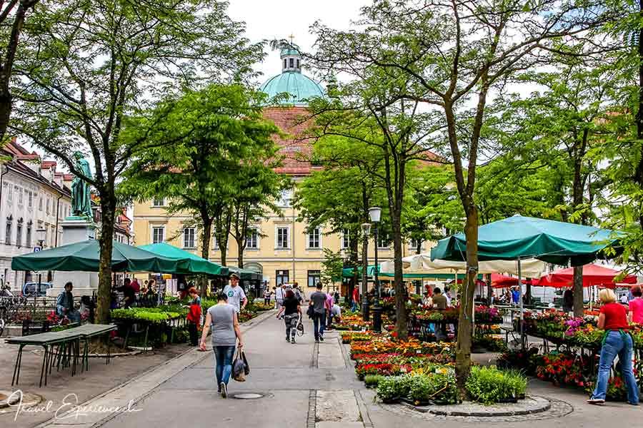 Slowenien, Ljubljana, Markt