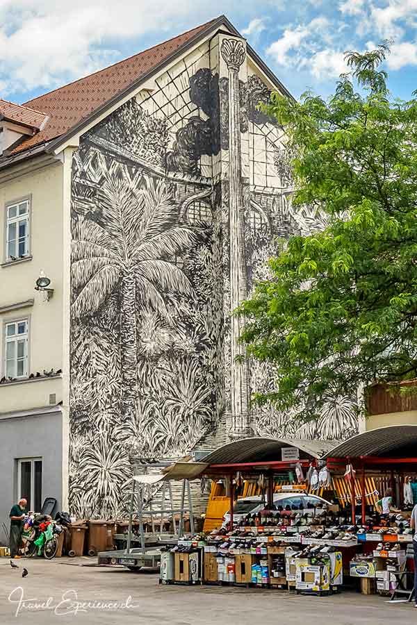 Slowenien, Ljubljana, Streetart