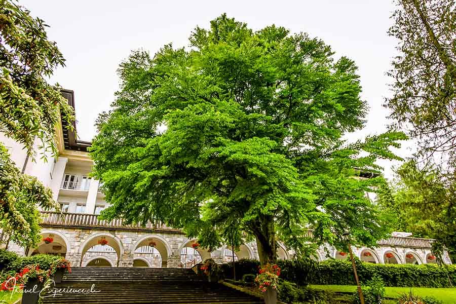 Slowenien, Villa Bled